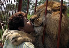 A Place to Rest – Blog the Change for Animals | Animal Culture