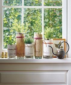herb garden, indoor herbs, herbsgarden, kitchen windows, flower vases, planting herbs, herbs garden, planter, flowers