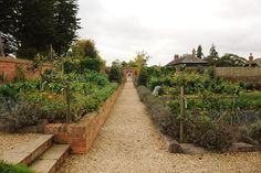 The walled garden at The Pig