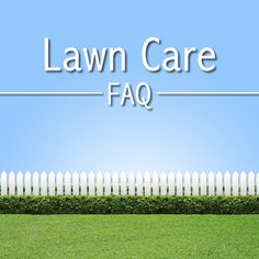 Here's answers to our most frequently asked questions about lawn care.