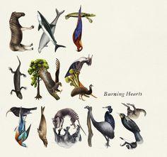 Burnign Hearts -Extinctions by Emil Bertell, via Behance