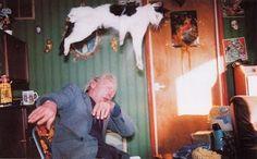 ¡El gato voladooooooor!