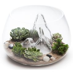 The textured interior of the Glasscape Fishbowl makes a unique vessel for terrariums, fishbowls, or decor all on its own.