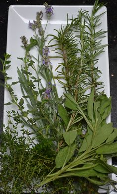 How to Create Herbs de Provence from Your Garden.