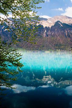 Interlaken | Bonnie Jenkins