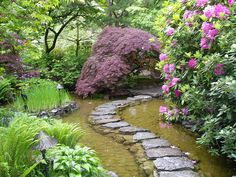 Even with a small yard, it'd be cool to make a man-made pond with a path through the middle. Then put little fish in the pond. Water Gardens, Yard, Pathway, Stone Paths, Garden Paths, Japanese Gardens, Craft Storage, Pond, Stepping Stones