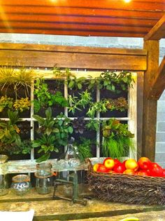 Bits from PDX Yard, Garden and Patio show 2012