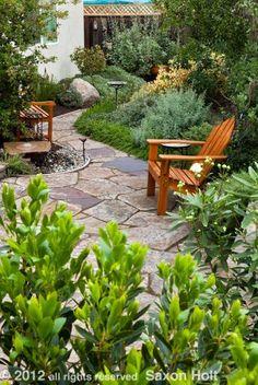 path and patio backyard California native plant garden