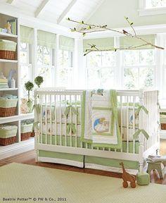 Baby bird room