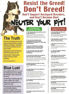 Resist the Greed!  Don't Breed!  Neuter your pit!  Please spay and Neuter!! pit bull, spay and neuter