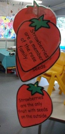 Hanging Strawberry Facts Craft...  Observe, draw, write about.  Create the hanging w facts.  Review life cycle