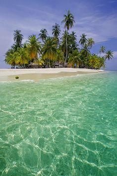 Tropical Paradise - by Alex Bramwell.