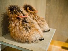 Furry feet at LV