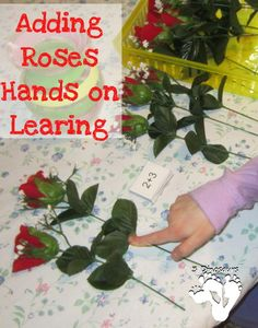 Adding Rose - Hands on Learning - 3Dinosaurs.com