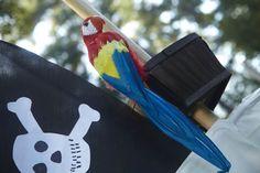 Jake and the Never Land Pirates Birthday Planning Guide #Birthday #Kids #BirthdayExpress