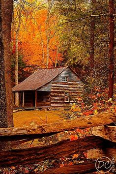 Cabin, Great Smoky Mountains Cades Cove, Tennessee