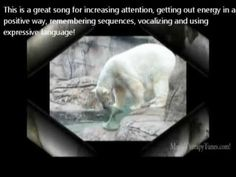 childhood music, bear kid, polar bears, music therapy, action song