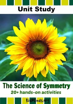 The Science of Symme