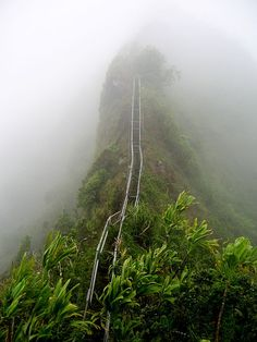 Haiku Stairs or the Stairway to Heaven. Oahu by Kirinwizard, wikipedia. #Haiku_Stairs #Oahu #Kirinwizard #wikipedia