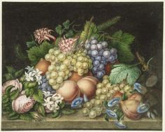"""A. Florian's """"Flowers and Fruit."""" Watercolor on paper. Museum of Fine Arts, Boston."""