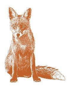 foxy...