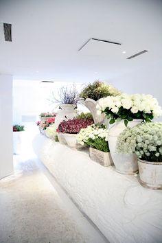White flower shop