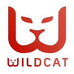 2014: Founder, Wildcat http://beta.thewildcat.co.uk