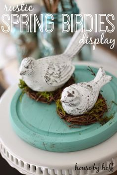Rustic Spring Birdies Display