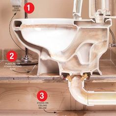 Cross-section of toilet-How to fix a leaking toilet all by yourself. Ever wonder what a toilet looks like? Here you go.