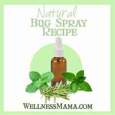 Homemade Herbal Bug Spray Recipes That Work!