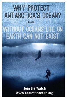 via Antarctic Ocean Alliance