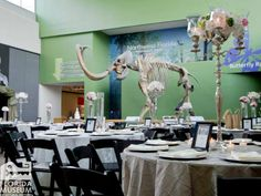 The Florida Museum is a distinctive location for weddings. museumexhibit time, florida museum