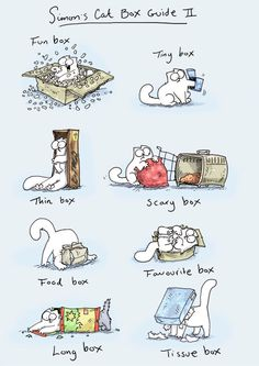 Simon's Cat - Home