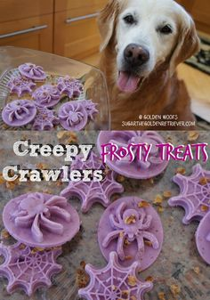 CREEPY Halloween Frosty Dog Treats from @goldenwoofs. How fun!