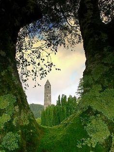 Depiction of Arches and Portals !! - Part 2. -Tree Portal, Glendalough, Ireland.