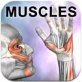 """Learn Muscles: Anatomy Quiz and Reference"" iPhone app by Real Bodyworks. This is perfect for physical therapy students and professionals."