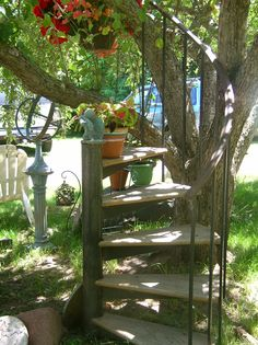 Great way to use found steps. stair, tree big, yard, tree houses, treehous
