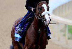 Union Rags...2012 Kentucky Derby Favorite