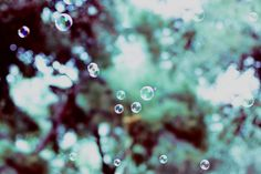 pretty bubbles by i.Anton