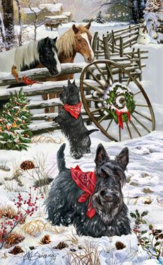 Scottish Terrier Christmas Holiday Cards