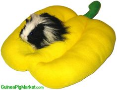 Summer comfort from www.GuineaPigMarket.com/plush-beds