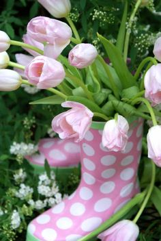 :-) boot, polka dots, spring weddings, tulip, pale pink, garden, flower, april showers, baby showers