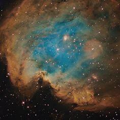 Monkey Head Nebula (NGC 2174/2175)