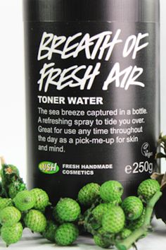Breath of Fresh Air Toner from Lush | Chanel Dror's Essentials | Camille Styles