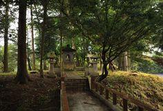 More Nagano Wasabi Farm / Tokyobling #fotografia #giappone
