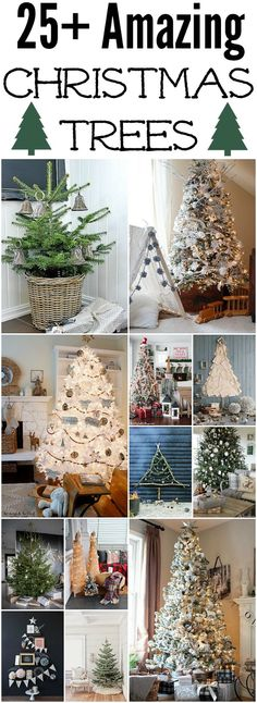 25+ Christmas trees