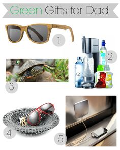 Green Gifts for Dad from The Shopping Mama's Father's Day Gift Guide
