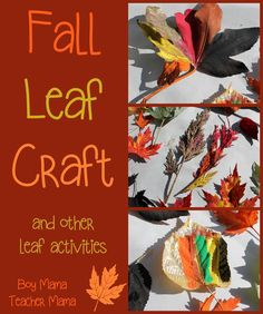Boy Mama Teacher Mama: Fall Leaves Crafts and Activities