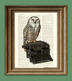 Owl on a vintage Typewriter Art Print 'The by collageOrama on Etsy, $6.99