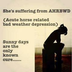 Acute horse related bad weather depression